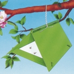 Codling Moth Trap