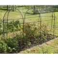 Long Steel Fruit Cage