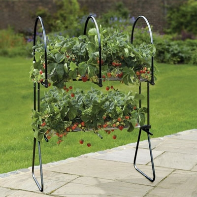 Agriframes Double Decker Strawberry Table Top
