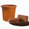 Planter Kit