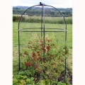 Round Steel Fruit Cage