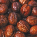 10% Off Walnut & Sweet Chestnut Trees