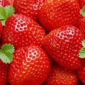 Strawberry 'Ostara'* - Pack of 12 (Perpetual)