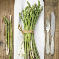 Wild Asparagus 'Amaro Montina' (pack of 10 crowns)