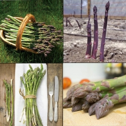 Mixed Asparagus Pack  (20 Crowns)