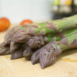 Asparagus 'Mondeo' (pack of 10 crowns)