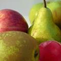 Self-fertile Fruit Trees
